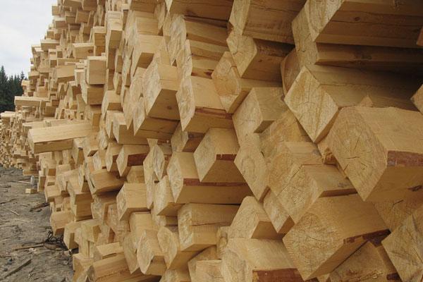 Импрегнация и обработка на дървени траверси от букова, чамова и дъбова дървесина